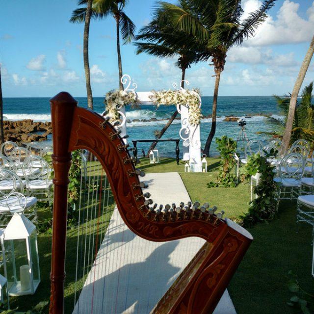 The Best Harp Serenade